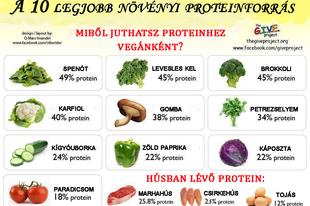 Egészséges vegetáriánusnak, vegánnak lenni? Tapasztalatok.