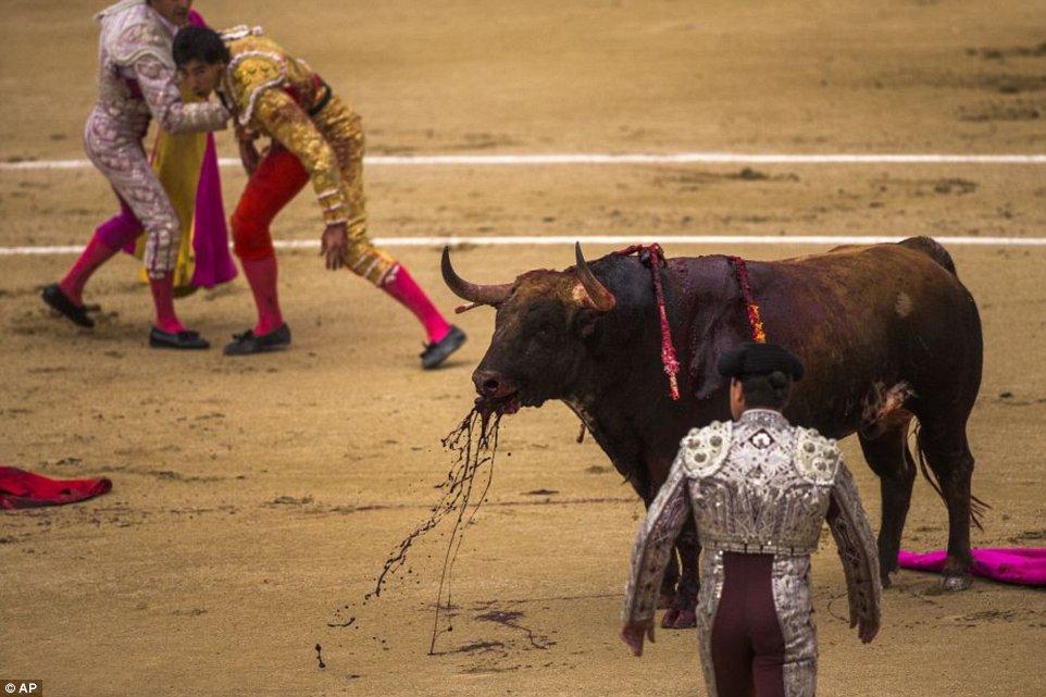 1400683592123_wps_spanish_bullfighter_jimen.jpg