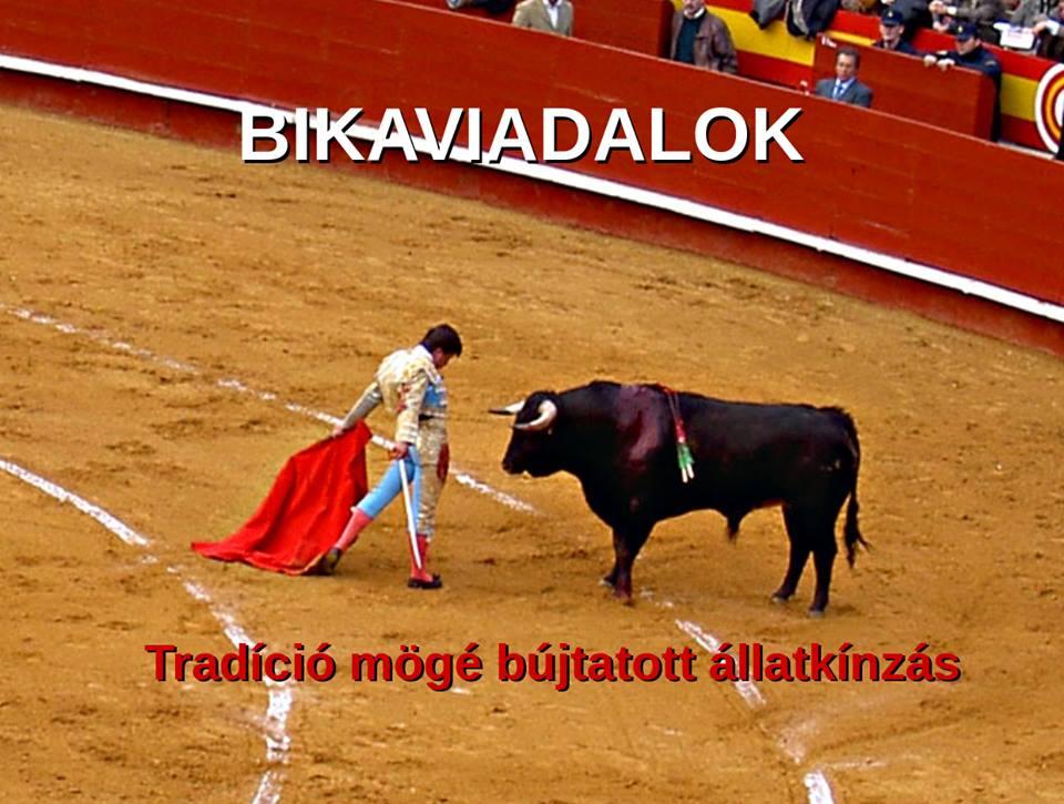 A bikaviadalokat, bikafuttatásokat és egyéb ünnepeket Spanyolországban közpénzekből finanszírozzák a  turistalátványosságként feltüntetve. Spanyolországban kevés olyan ünnep van, amelyen ne kínoznának állatokat.