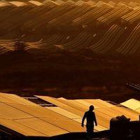 Európa legnagyobb naperőműve állami támogatások nélkül épült