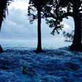A kényszermigráció és a klímaváltozás jelentik a legnagyobb veszélyt a világgazdaságra