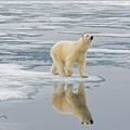 Hogyan lett a klímaváltozás polgárjogi kérdés
