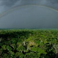 Már az Amazonas se a régi