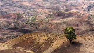 A klímaváltozás elleni küzdelem teremthet békét Afrikában