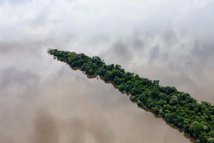 3058664-slide-8-a-birds-eye-view-of-humanity-killing-the-planets-rainforests.jpg