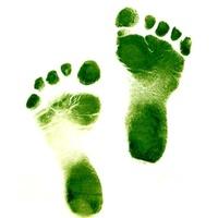 Az ökológiai Lábnyom - erőforrás felhasználás zöld szemmel
