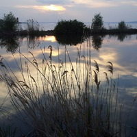 Vizes élőhelyek napja az óvodában