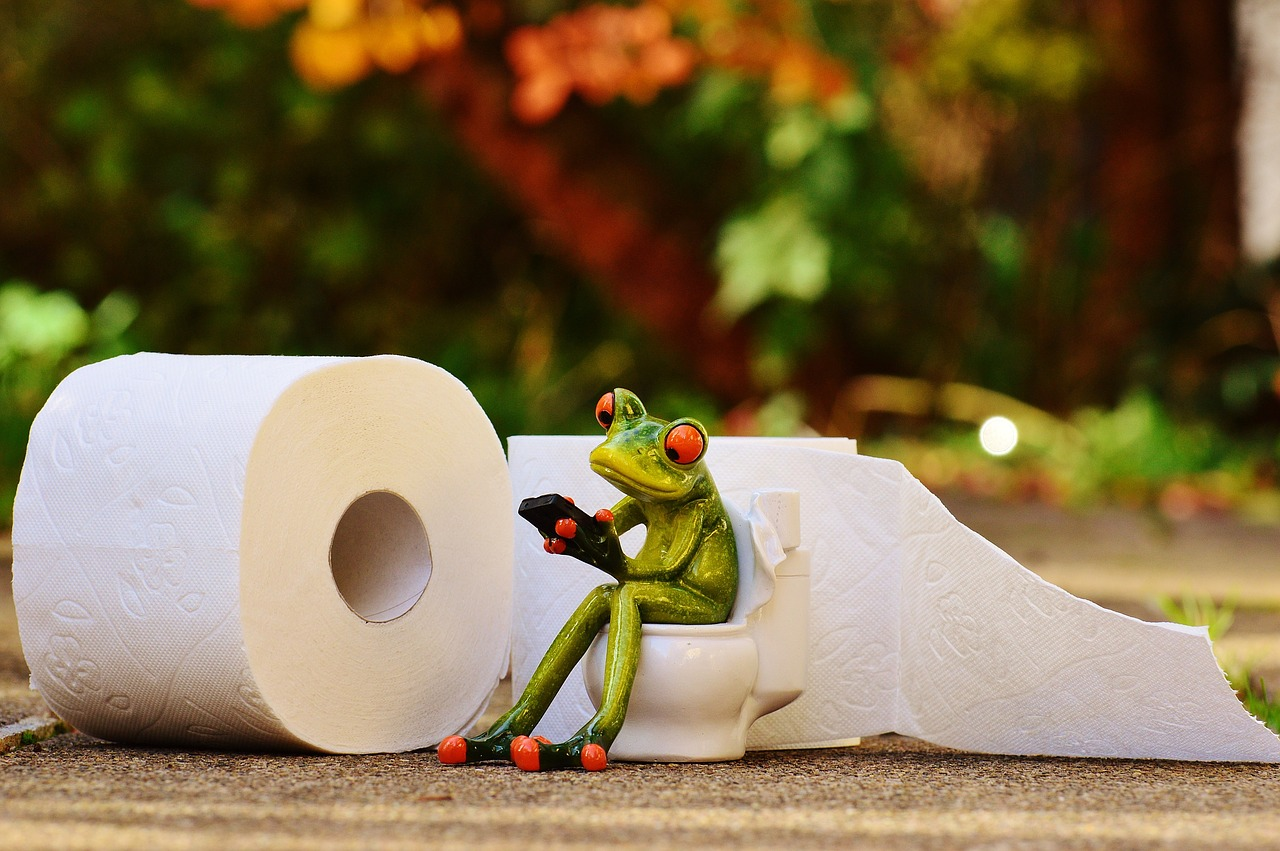 frog-1037252_1280.jpg