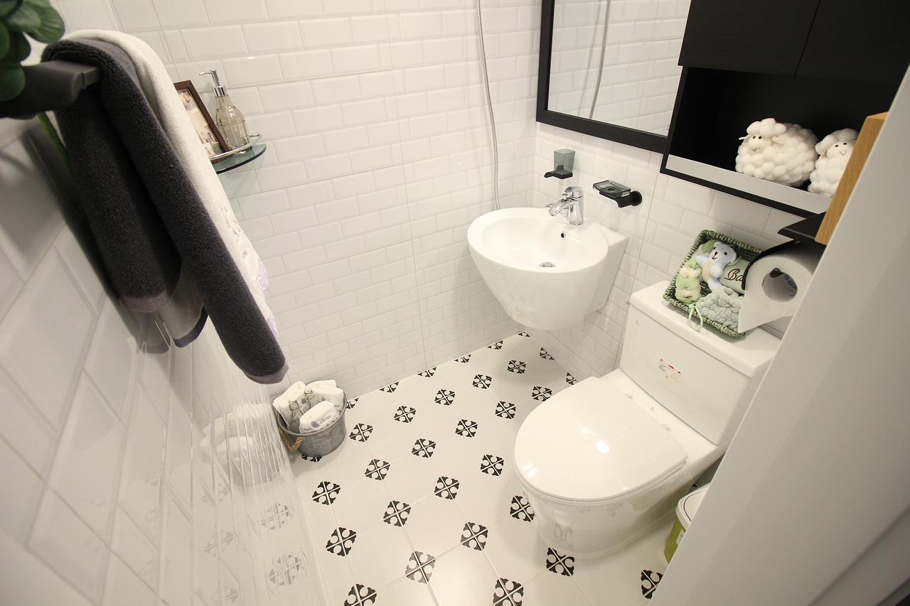 toilet-4786777_1280.jpg