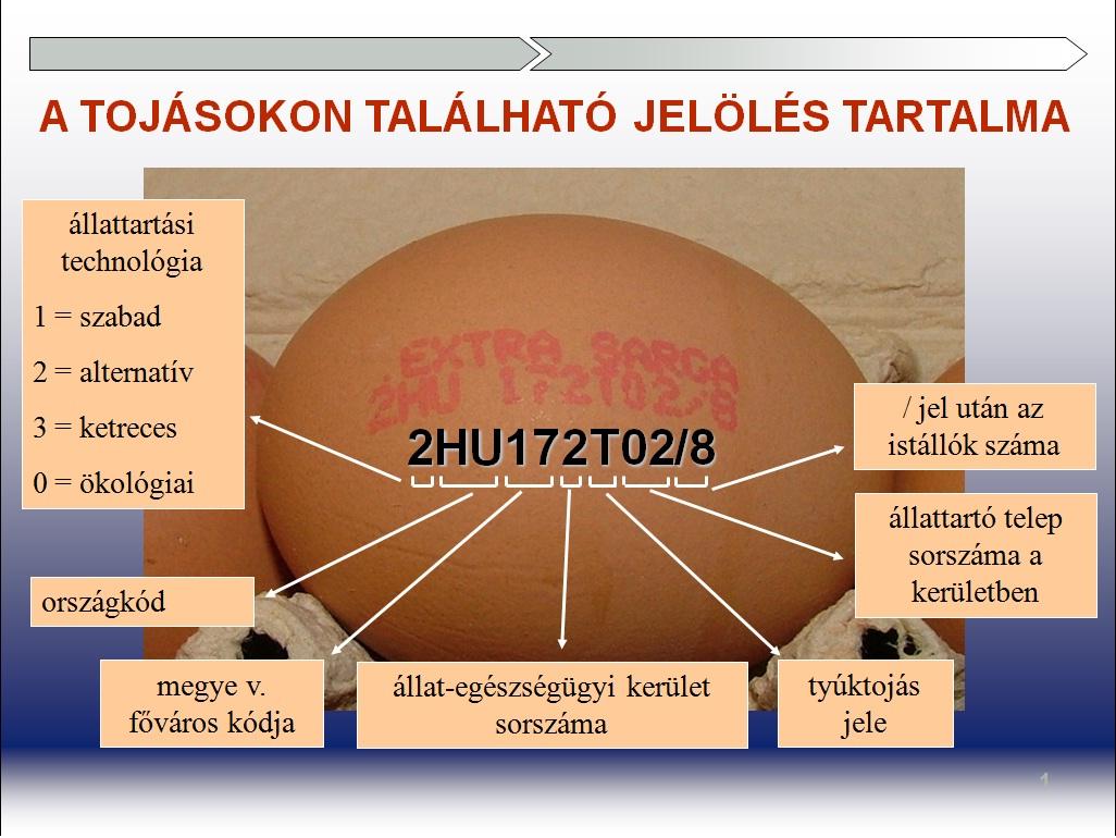 tojasjeloles_nebih_gov_hu_0.jpg