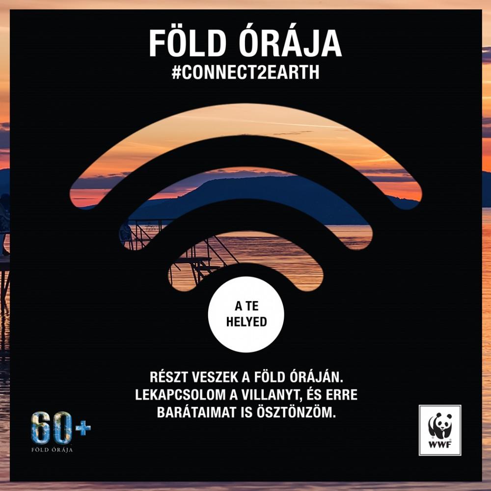 wwf_fold_oraja_elso_kihivas.jpg