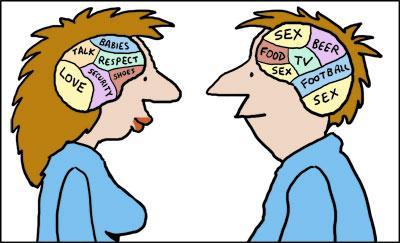 male_and_female_brains_118055.jpg