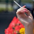 Dohányzás hatása a növényekre