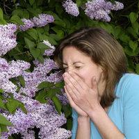 Allergia: a cigi segít?
