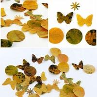 Őszi pillangók
