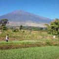 Eheti vulkán: Rinjani
