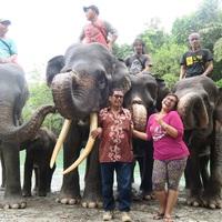 Szumátra 4. - Tangkahan, az észak-szumátrai őserdő rejtett kincse
