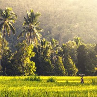 Ők hozták haza nekünk Indonéziát