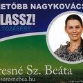Az egyik polgármesterjelölt válasza 2010-ben, a Nagykovácsi Természetvédők Egyesületének