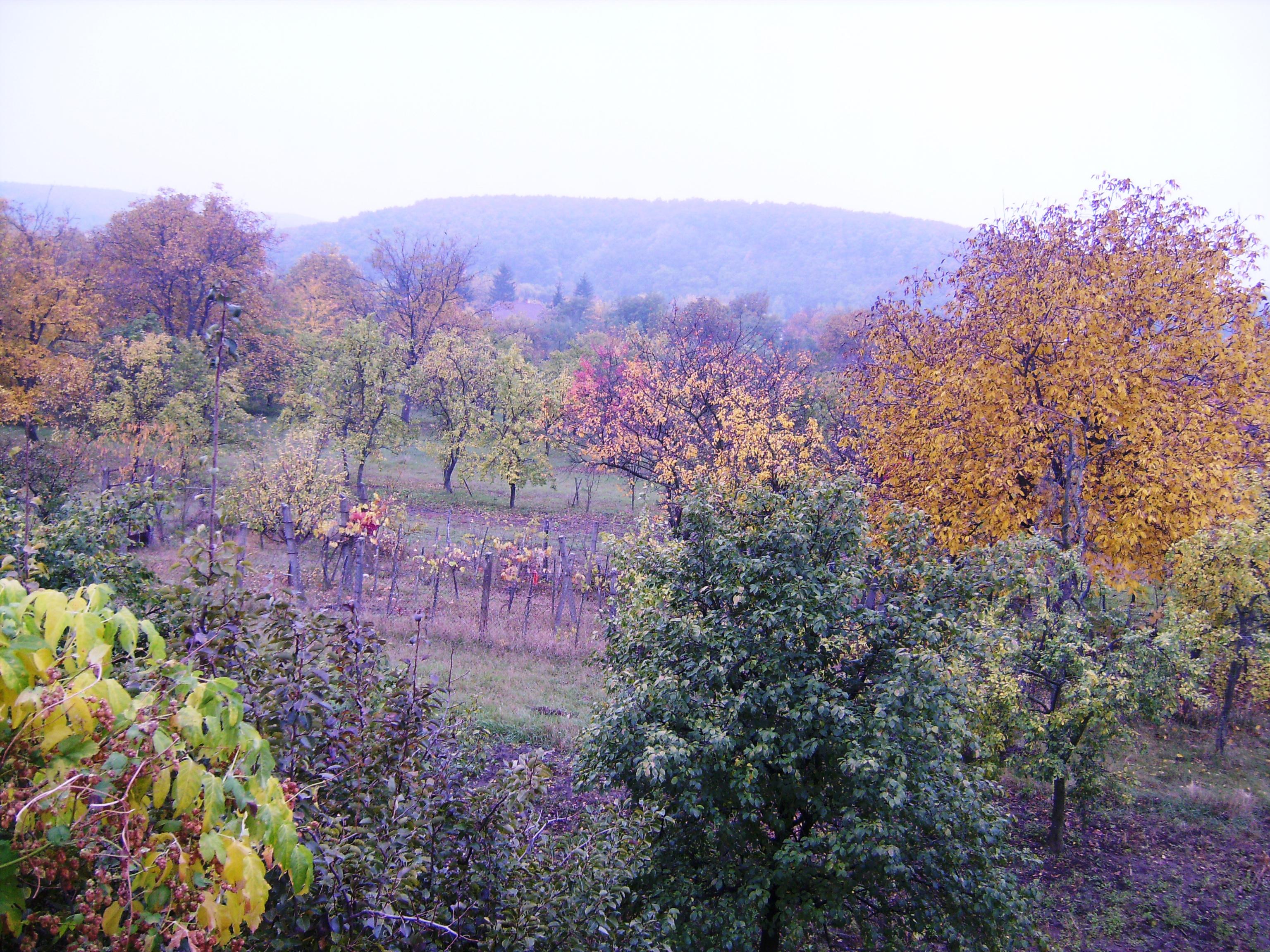 Lenyűgöző volt viszont a táj őszi színpompája.