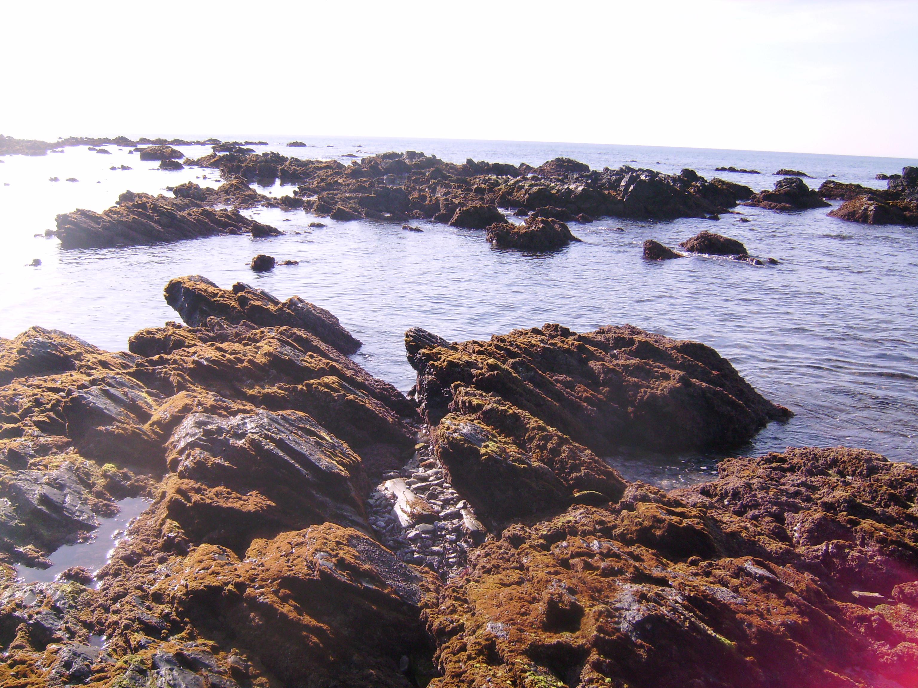 A tenger ad húst a kenyérhez,<br />a tenger ad kezedbe kenyeret, <br />a tenger adja az édes esőt,<br />ő mosdatja a kopár hegyeket.<br />