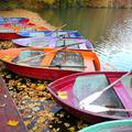 7 nélkülözhetetlen app az őszi kirándulószezonhoz