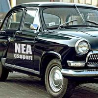 Végső megoldás: NEA