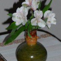 A törött szárú virág