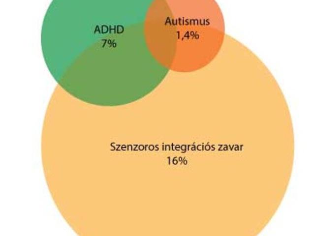 Mi a különbség a szenzoros integrációs zavar és az autizmus között?